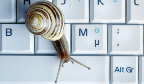Snail on keyboard