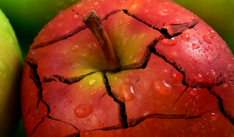 A broken red apple
