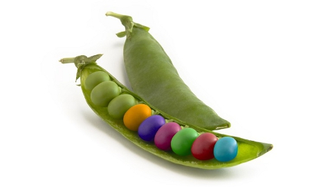 Different coloured peas in a pod
