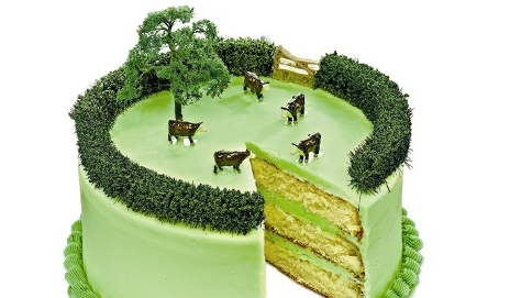 Cake made to look like a field