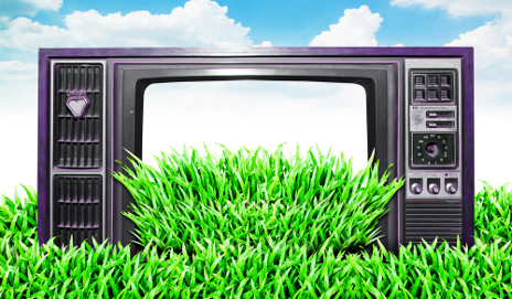 TV on grass