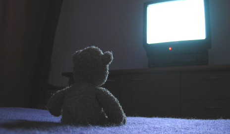 Teddy watching TV at night