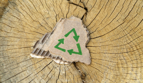 Tree trunk with recycling sign