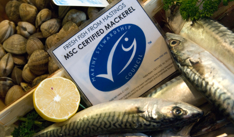 Marine Stewardship Council (MSC) fish label
