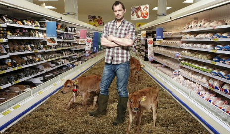 Jimmy Doherty in supermarket with calves