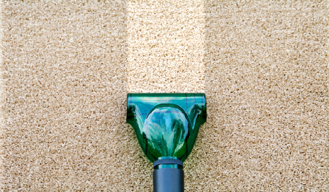 Steam cleaner cleaning a carpet