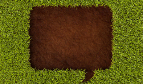 Speech bubble in grass