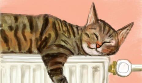 iPad portrait of a cat on a radiator