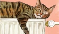 iPad painting of a cat on a radiator
