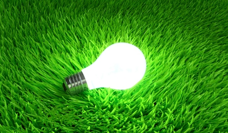 An illuminated light bulb on green grass