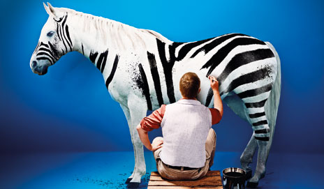 A white horse painted like a zebra