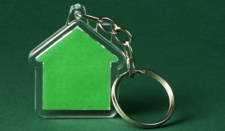 Picture of a green house keyring