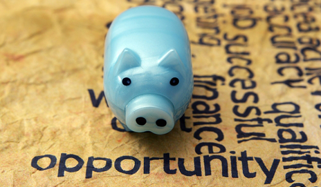 Blue piggy bank opportunity
