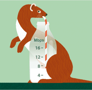 Weasel illustration illustration by: Gillian Blease