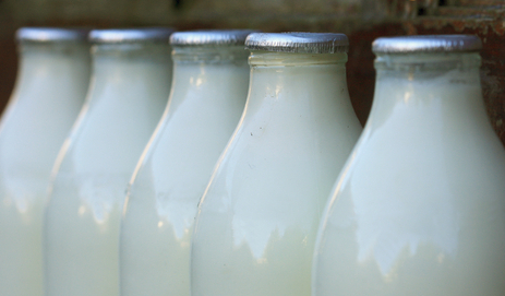 Row of milk bottles