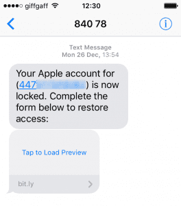 Apple scam text